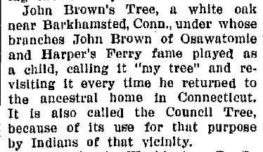 John Brown's Tree