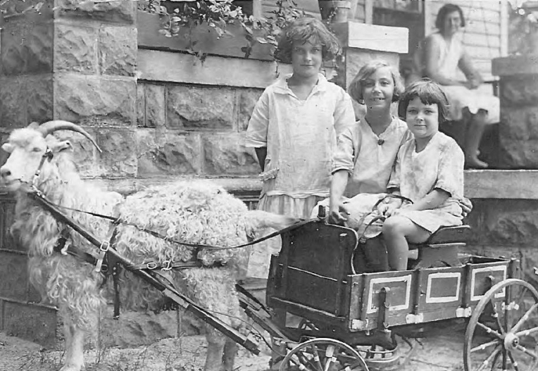 Each time I think I've found a favorite and Rhonda Yamauchi surprises me with even a more precious photo - Mildred, Josephine & Viola M. & Viola B. Scheett