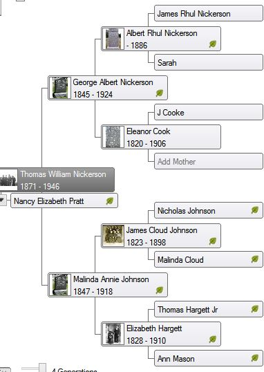 Nickerson Lineages 2